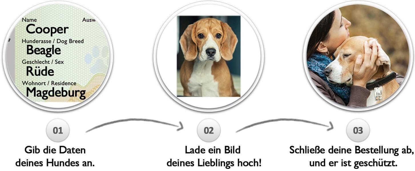 Prozess der Erstellung des Hundeausweis. Zuerst werden die Daten des Hundes eingegeben, dann wird ein Bild des Hundes gewählt und hochgeladen und zum Schluss muss die Bestellung nurnoch agbeschlossen werden